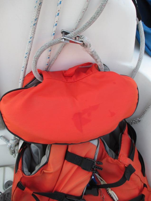 PFD/Halyard Rescue