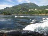 Kayak in Sechelt Rapids