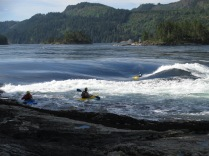 Kayak in Sechelt Rapids